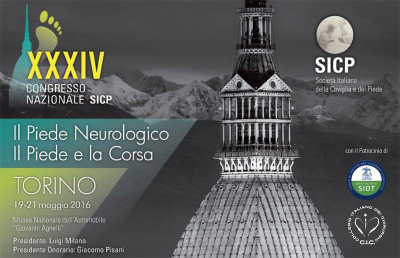 2016 SICP Congress - Nicola Portinaro